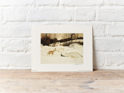 Deer on Snow Painting by Patrick Oxenham