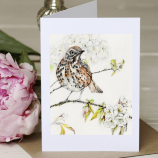 Thrush Greeting Card by Margaret Taylor