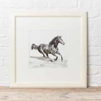 'Gallop' by Matt Clarke