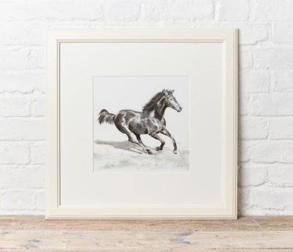 'Gallop' by Matt Clarke